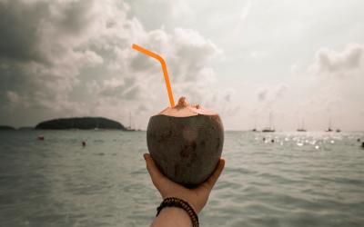 Coconut: Friend or Foe?