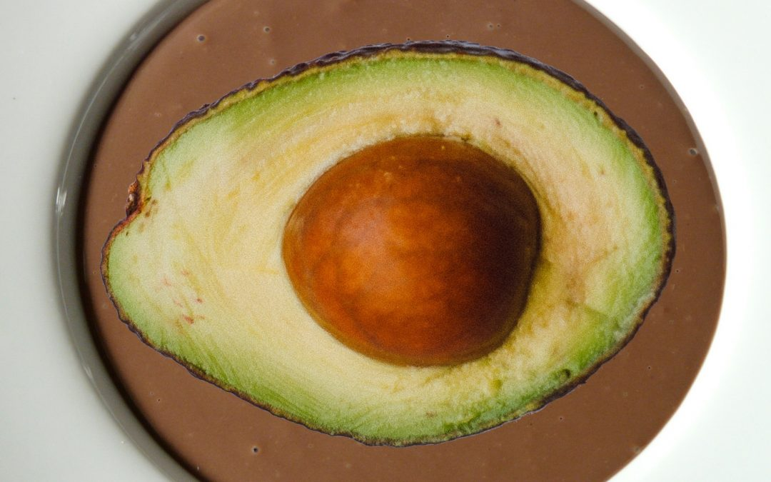 Vegan-Paleo-Anti-inflammatory Avocado Chocolate Pudding!