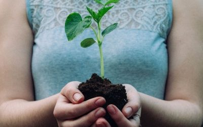 Soil and the Microbiome